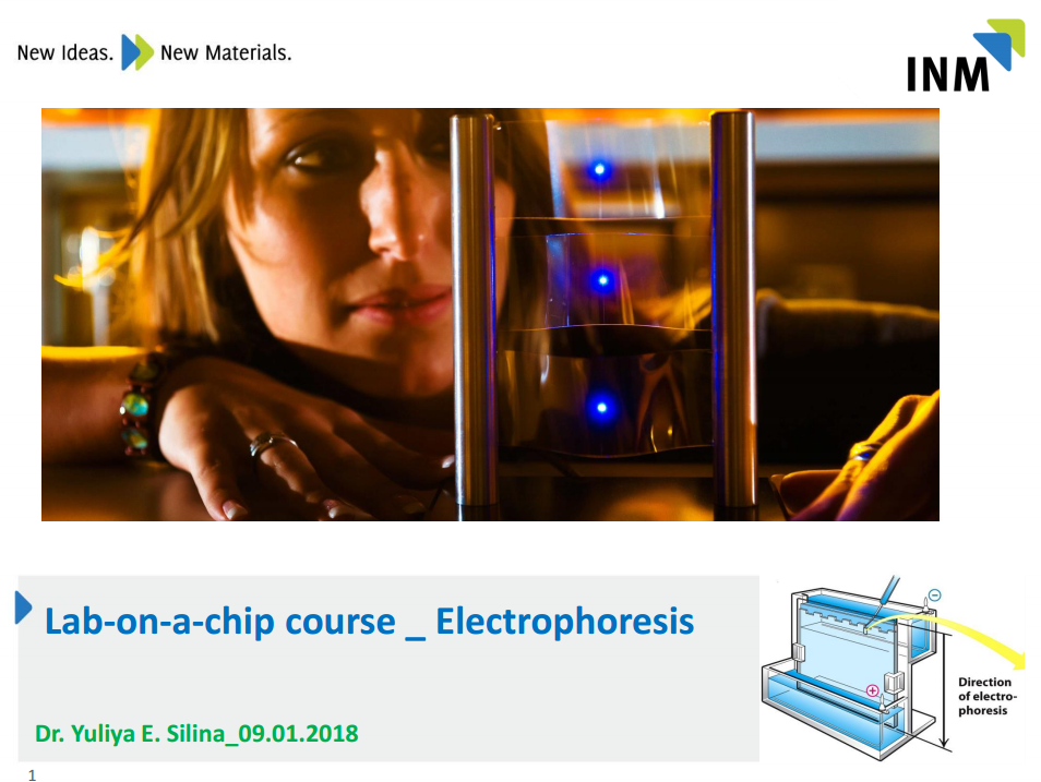 9 lab on chip - electrophoresis.PNG